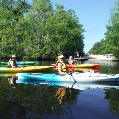 Group of kayakers